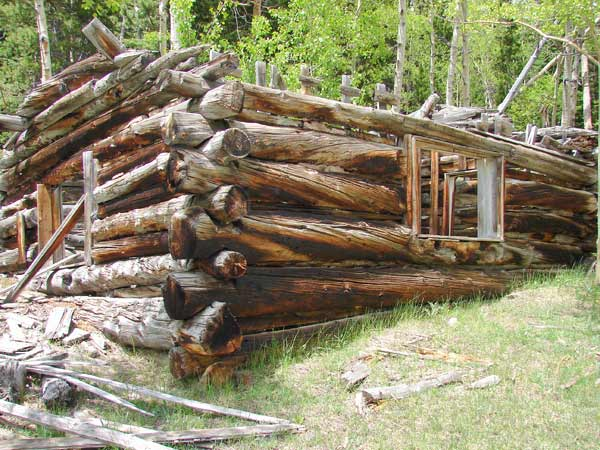 Black Hawk Peak Area Cabin